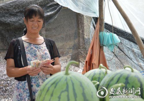 吉庆镇:万亩西瓜上市迎来开门红