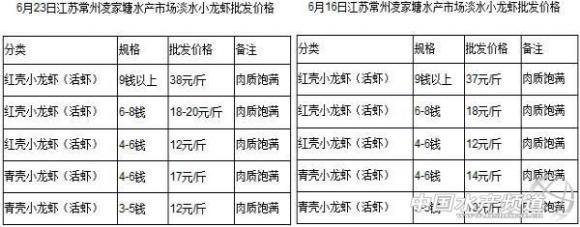 货源地缺货 江苏常州市场小龙虾批发价格上涨