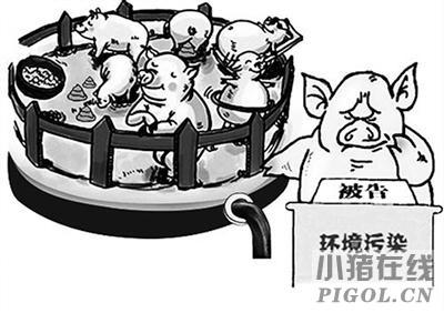 福建永春段关闭拆除167家生猪养殖场