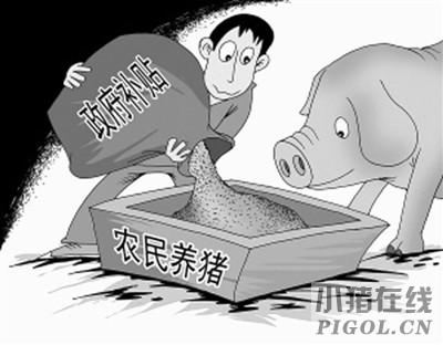 养猪究竟有哪些补贴要记牢?