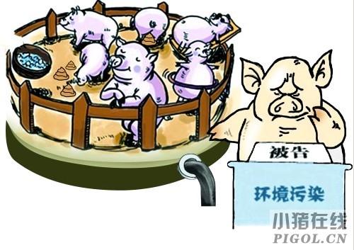 福州全市禁养区内超八成猪场已拆除