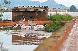 昆明嵩明连日遭遇强降雨200亩蔬菜被淹