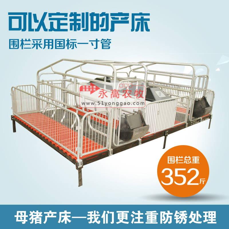 母猪产床之母猪分娩注意事项_母猪产床建设