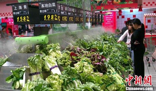 河北洪灾致全省蔬菜价格上涨成拉升全省CPI主要力量