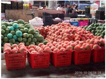 义乌农贸城:西瓜淡季交易显热销
