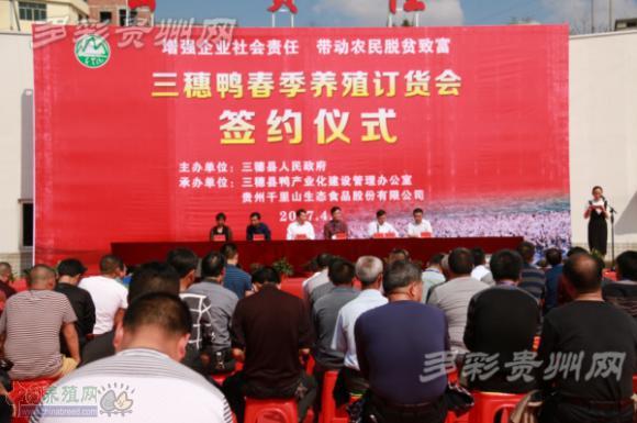"""助力脱贫!贵州三穗1000农户喜接4700万元""""三穗鸭""""养殖订单"""