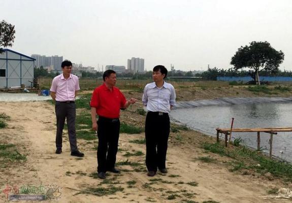 广东东莞市水产管理部门到道�蚩�展养殖指导工作