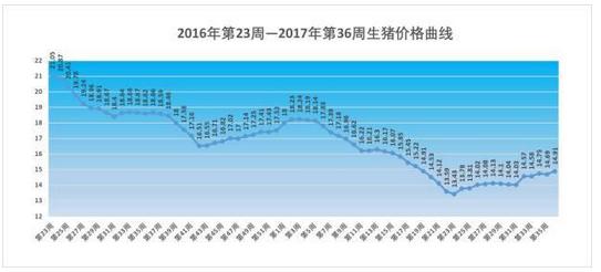 2017年第36周生猪价格仔猪价格:纠结的行情国庆中秋向上还是向下