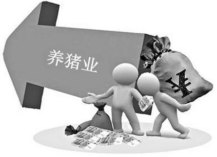 雏鹰农牧:中国生猪市场现状及行业发展趋势