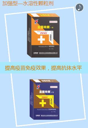重庆西农大科信动物药业――蓝圆转阴  养猪人的福音