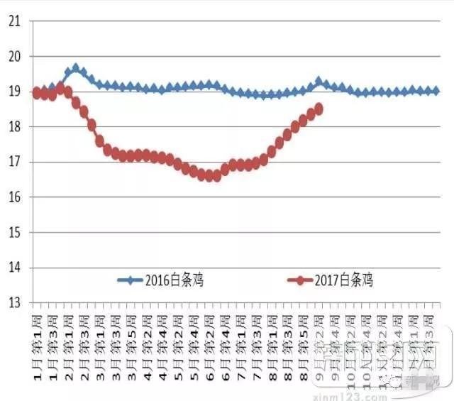 上半年白鸡养殖成本下降18.3%黄鸡却上升了1.7%?