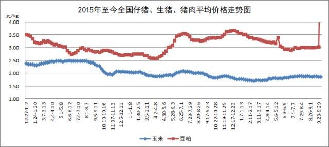 10月第3周:第四季度,生猪市场看好