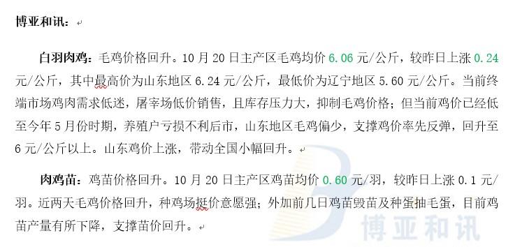 鸡价反弹苗价跟随―肉鸡主产区评述【10.20】