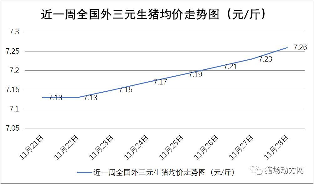 专家:12月、1月猪价将涨至7.4到7.5元/斤,后期生猪供应将偏紧