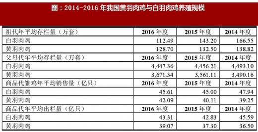 2017年黄鸡竞争情况及市场占有率分析