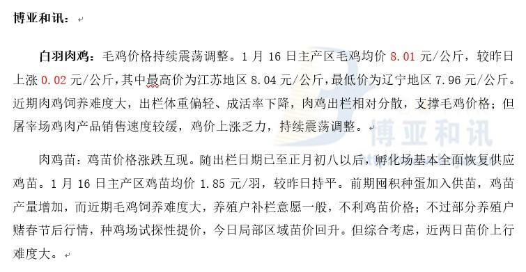 毛鸡价格持续震荡―肉鸡主产区评述【1.16】