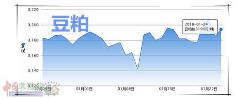 01月24日猪评:腊八猪价仍微跌,企稳之后会有突破吗?