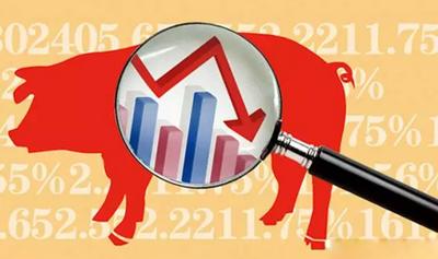 鞍山生猪价格徘徊在近年同期较低点