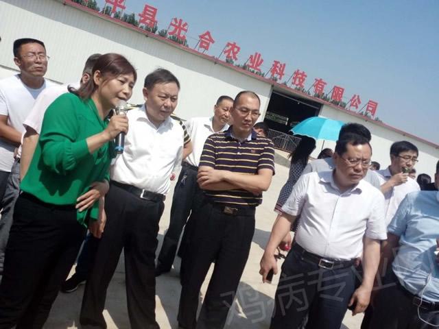 河南省家禽产业2018年6月13—14日助力脱贫现场培训会纪实