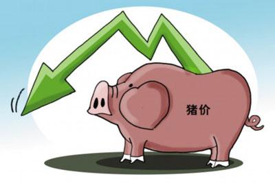 去年江西生猪价格同比下跌14.24%