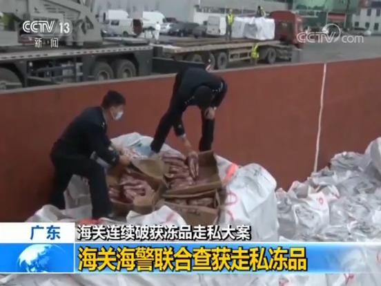 涉案货物7000余吨,海关破获多起冻品走私案