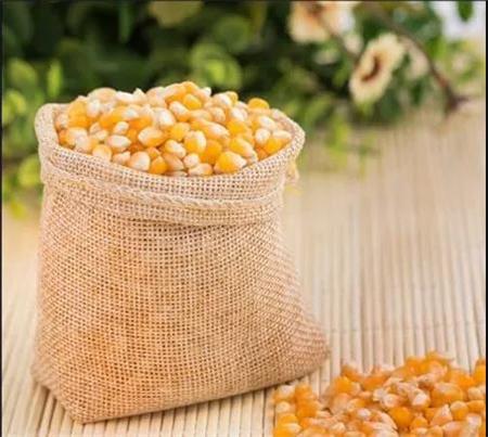 山东玉米下跌接近5分,玉米将迎来十年的大行情!