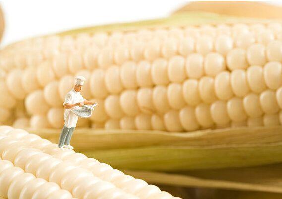 中美若达成协议,中国将购买2000万吨玉米、1000万吨小麦