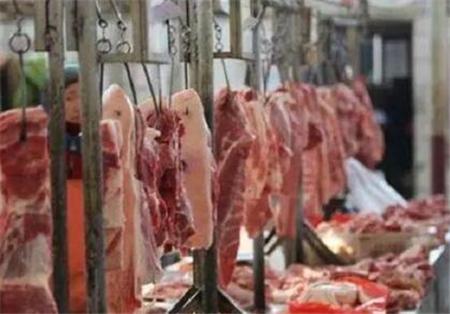 中国猪肉供不应求 德国生猪收购价上涨27%