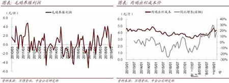 中金:随着3月猪价行情反转,后续业绩有望逐步改善